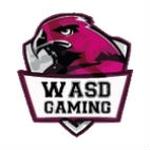 WASD Gaming