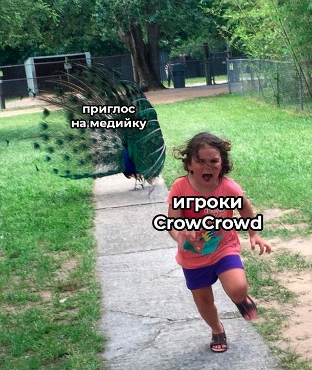 Source: vk.com/crowcrowd