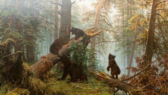 Блогер воссоздал картину «Утро в сосновом лесу» в Far Cry 5