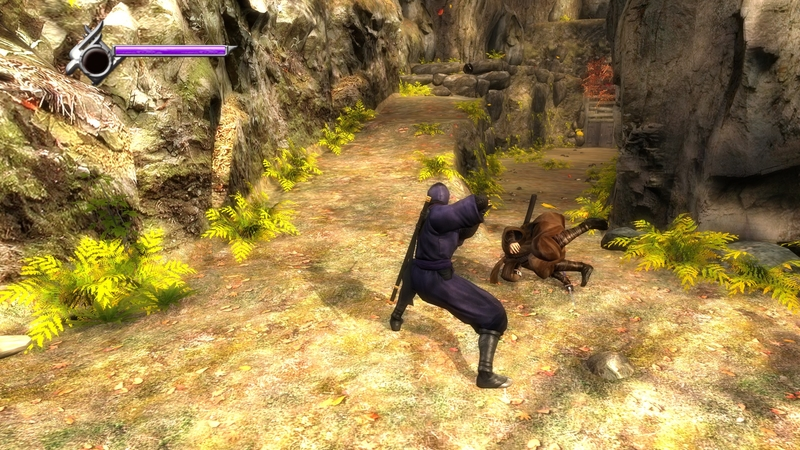 Скриншот из Ninja Gaiden Sigma