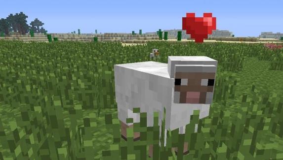 Геймер сыграл в Doom на овцах из Minecraft