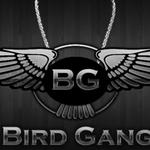 Birdgang