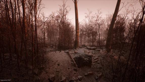 Анонсирован эксклюзивный для PS5 хоррор Abandoned