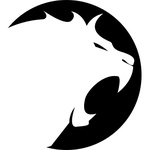 Team Lioncast