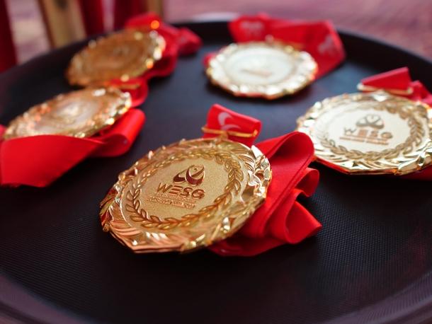 Золотая медаль на WESG 2018