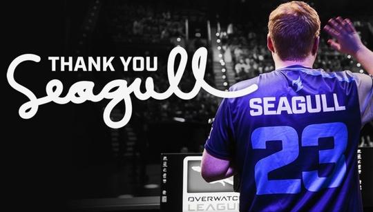 Seagull retires, returns to full-time streaming