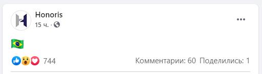 Представители HONORIS опубликовали флаг Бразилии в группе в Facebook