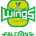 Jin Air Greenwings Falcons