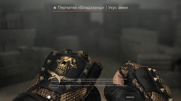 Bloodhound gloves