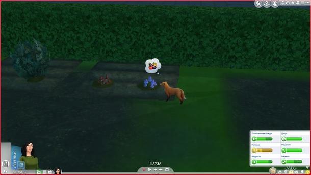 А где овощи? Откуда тут грибы?   The Sims 4, «Загородная жизнь»