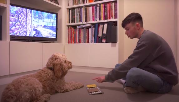 Собаку научили играть в Call of Duty: Warzone