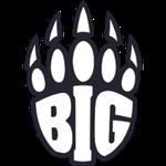 BIG Academy