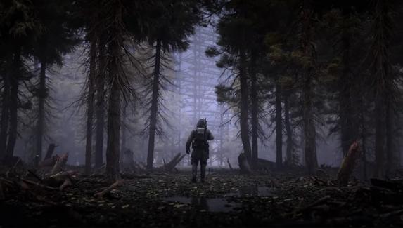 Авторы S.T.A.L.K.E.R. 2 о продолжительности сюжета: «Это очень долгая игра, даже если идти только по основному квесту»