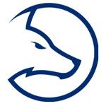 Team LDLC Blue