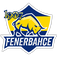1907 Fenerbahçe Esports
