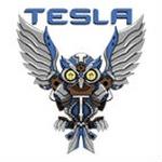 Tesla Gaming