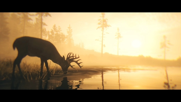 Кадр из Red Dead Redemption 2