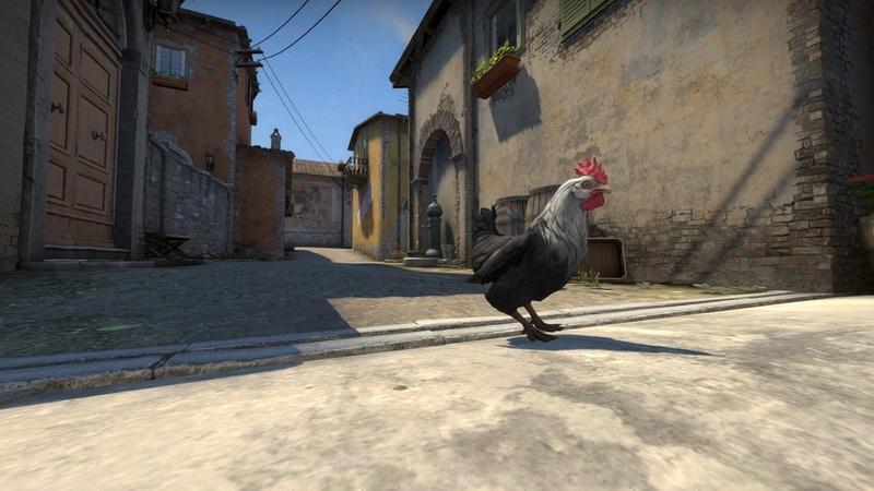 Новая модель курицы