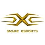 Snake eSports KR