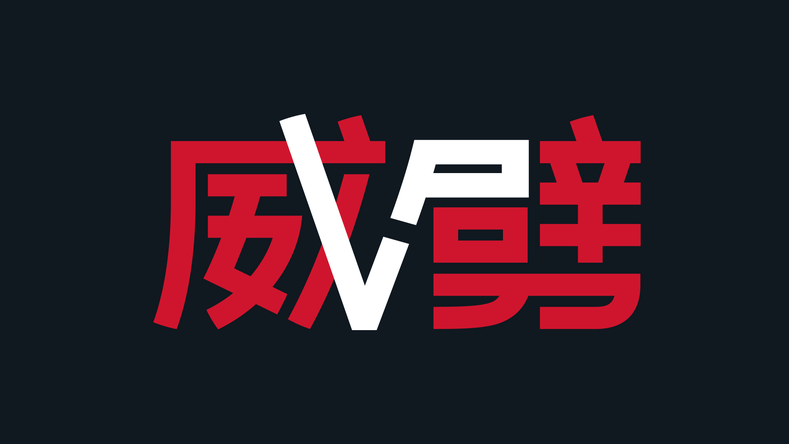 Virtuspro Visual Identity For The International 9 Virtuspro