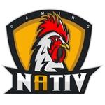 Nativ Gaming