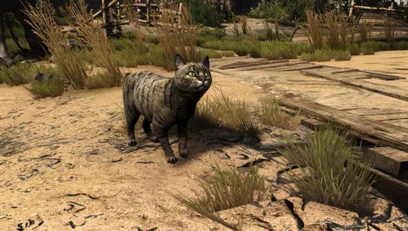 Коты и коровы в HD — вышел мод для The Witcher 3: Wild Hunt c улучшенными моделями