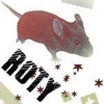 RatsOfTheYear