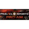 Pinnacle DotA 2 Cup