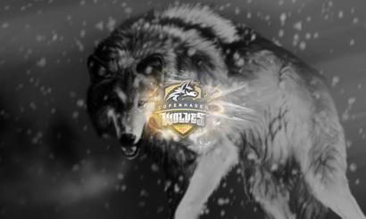 Copenhagen Wolves прекращают свою деятельность