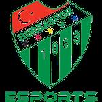 Bursaspor Esports