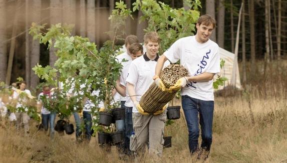 Разработчики Plants vs. Zombies пожертвовали $500 тыс. на посадку деревьев