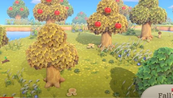 Сверчки, желуди и шишки — вышел трейлер сентябрьского обновления Animal Crossing: New Horizons