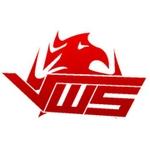 VwS Gaming