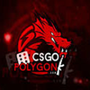 Binary Dragons csgopolygon - Season 1