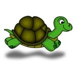Turtle Masters