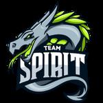 Team Spirit Staff