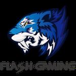 Flash Gaming