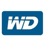 Team WD